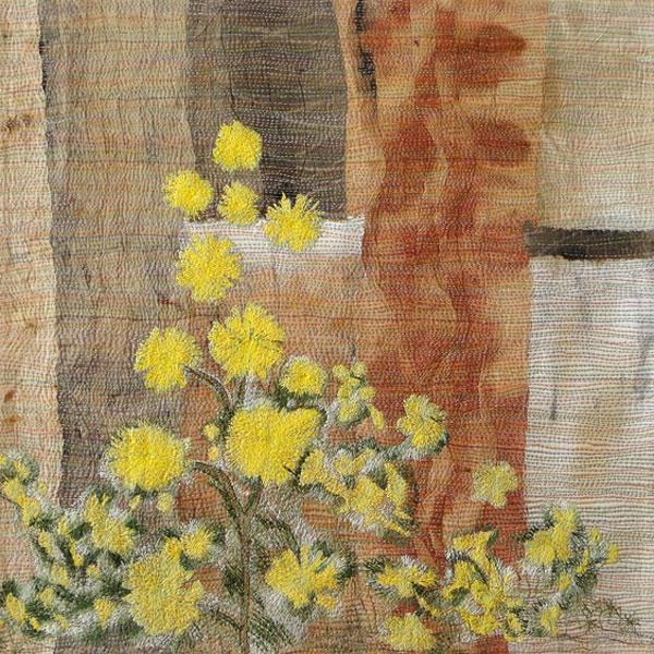 Wondrous Wattle by Kathy Bielby